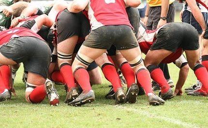 Rugby Ergebnisse