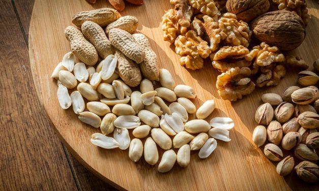 Eiweißreiche Lebensmittel – Nüsse und Steinfrüchte mit viel Eiweiß
