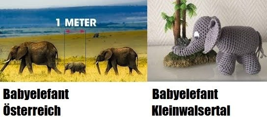 unwort des jahres - babyelefant